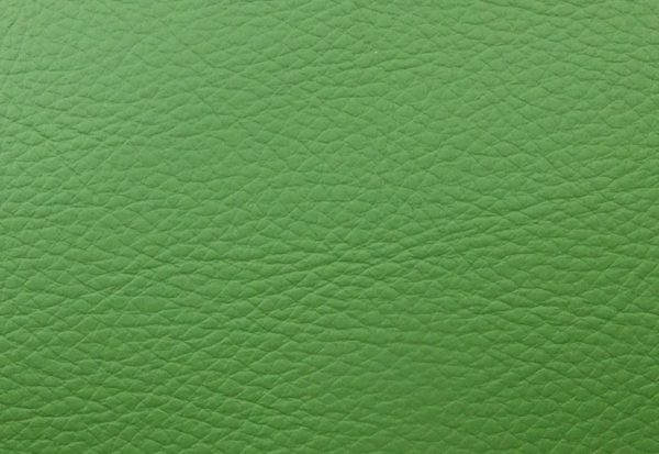 Reed Green Leather